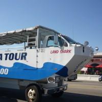 Land Sea Tours